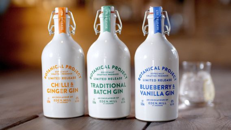 You Can Now Buy Your Favourite Aldi Gin Online