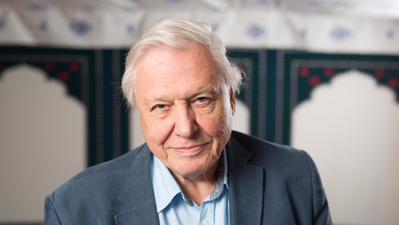 Sir David Attenborough Says Filming 'Blue Planet 2' Was A 'Tragic Sight' At Times