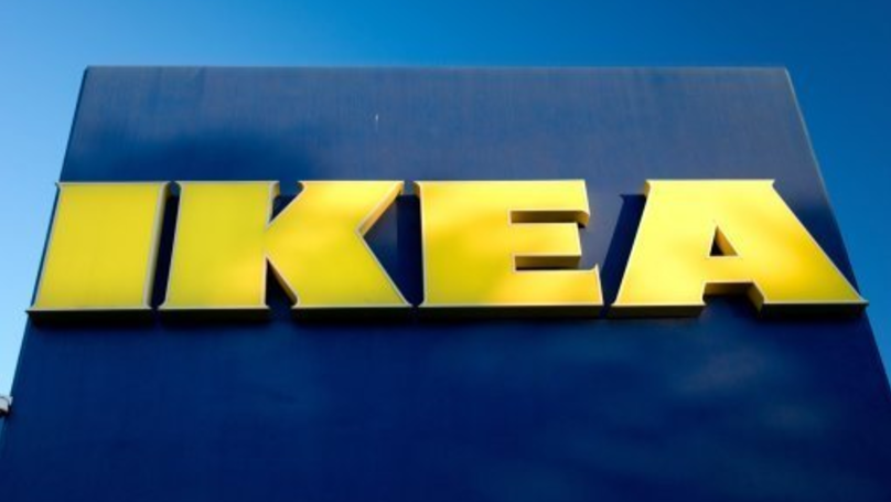 Italian IKEA Store Opens Its Doors To Stray Dogs