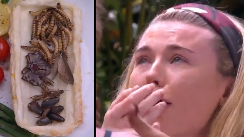 Georgia Toffolo And Rebekah Vardy Dry Retch In 'I'm A Celebrity' Bushtucker Trial