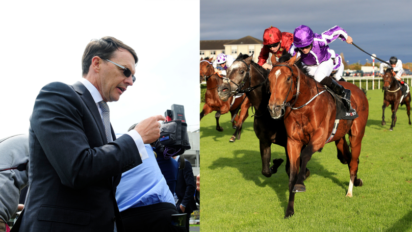 Aidan O'Brien Seeks Magnificent Seven In Investec Derby