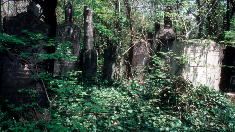 Five People Are Being Offered £200 To Spend Halloween In A Graveyard