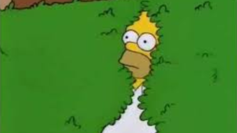 Homer Simpson Uses His Infamous Bush GIF In Latest Episode Of 'The Simpsons'