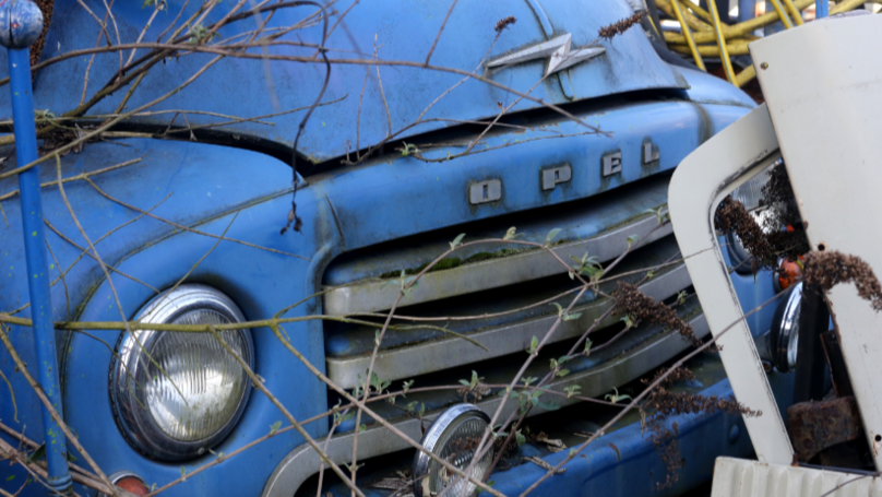 Man Forgot Where He Parked His Car And Took Two Decades To Find It