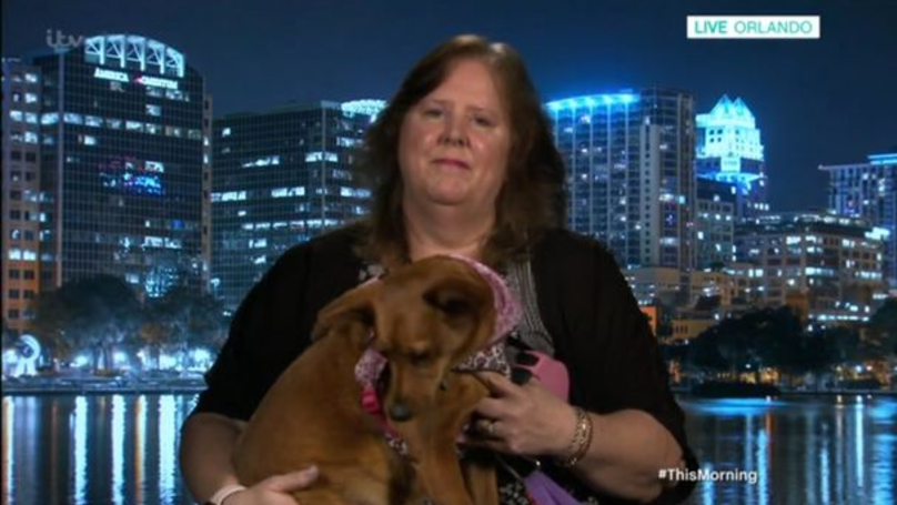 Woman Wants To Be Cryogenically Frozen With Her Pet Corgi