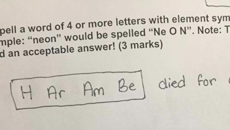 Science Teacher Gives Incredible Feedback On Bonus Exam Question