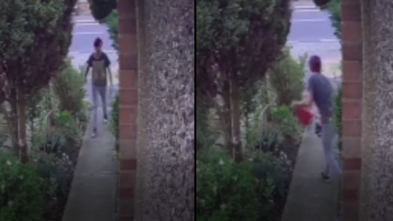 Man Steals Giant Garden Gnome, Receives Instant Karma During Get Away