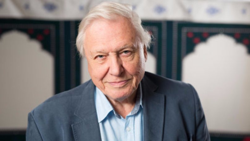 ​The BBC Has Another Huge Documentary From Sir David Attenborough Ready for 2018