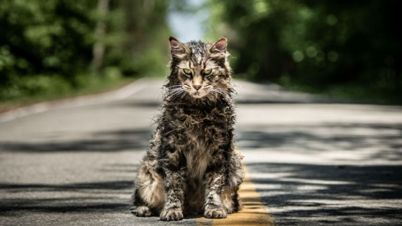 A New Trailer For Stephen King's 'Pet Sematary' Is Here And It Looks Terrifying