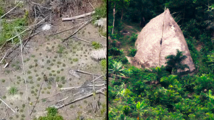 Drones Capture Incredible Footage Of Uncontacted Amazon Tribe For The First Time