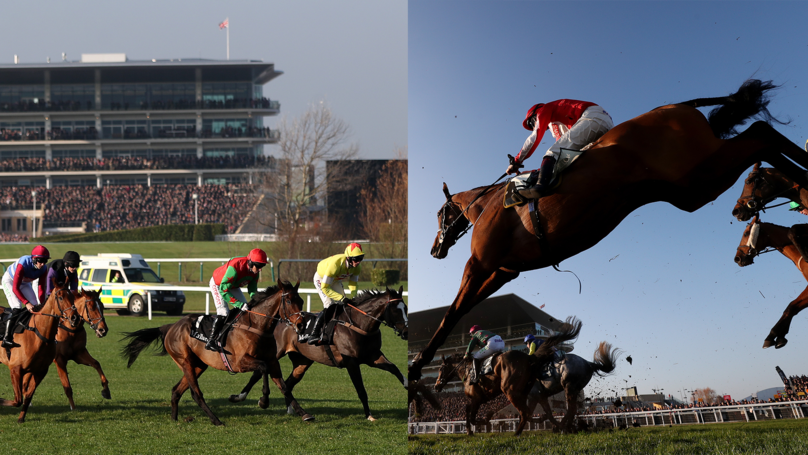 ODDSbible Racing: Daily Tips - 15th December