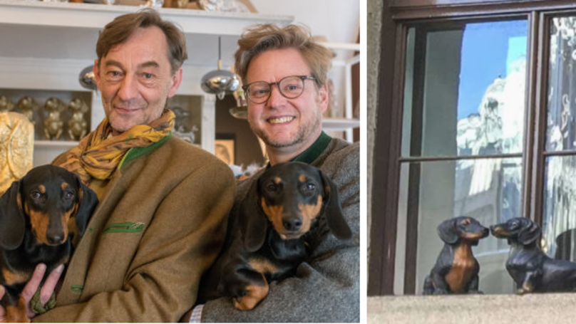 There's A Museum Dedicated To Sausage Dogs And It's Amazing