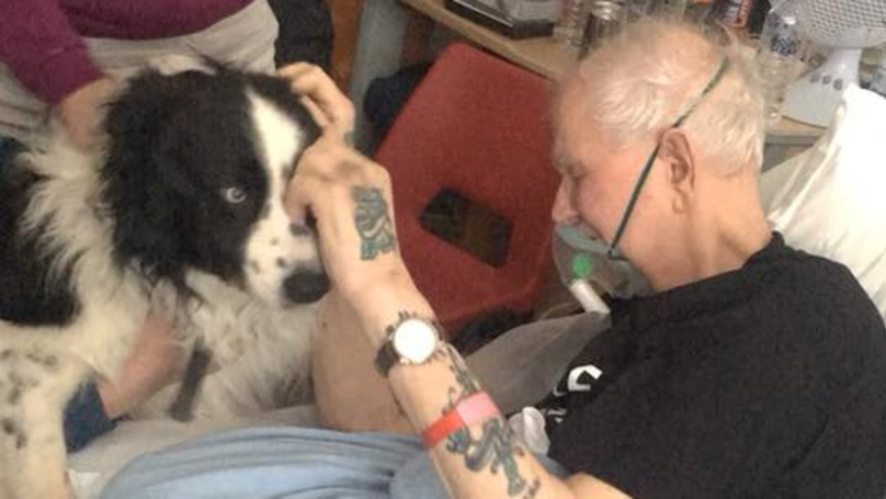 Dying Grandad Gets Final Wish To See His Pet Dog