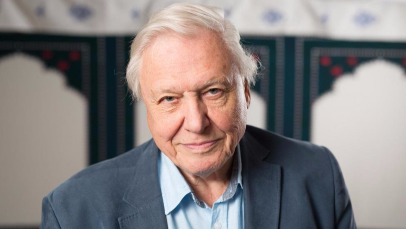 David Attenborough Will Return To Our Screens This Year With New Show 'Dynasty'