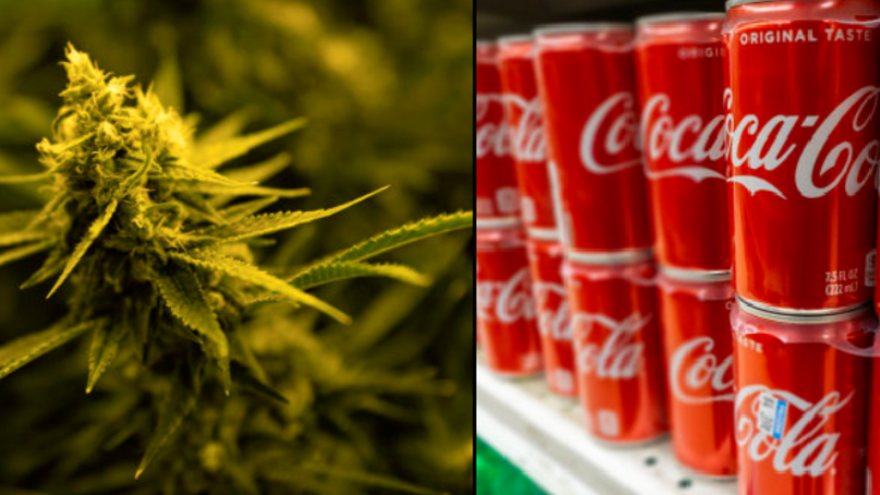 Coca-Cola Preparing To Make Cannabis-Infused Drink For The Fist Time Ever