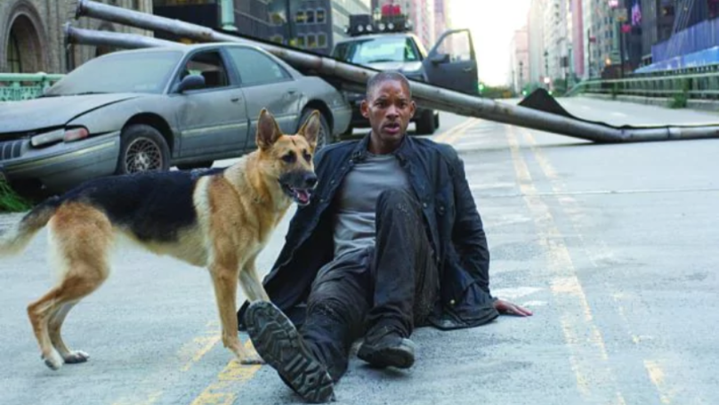 Abbey The Dog From I Am Legend Is Now 13 And Enjoying Her
