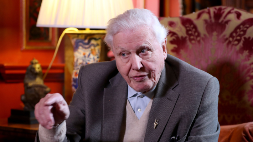 ​Sir David Attenborough Once Almost Died During Filming