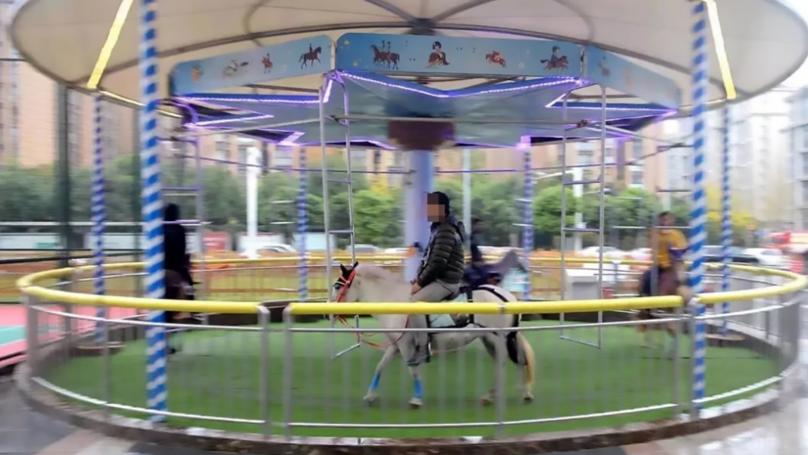 Carousel In China Slammed For Using Real Horses