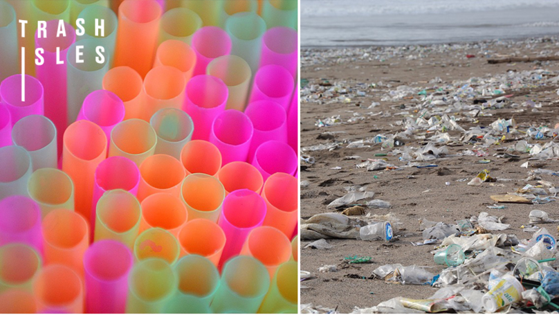 Cornwall Proposes Ban On Plastic Straws In Bars To Cut Ocean Pollution