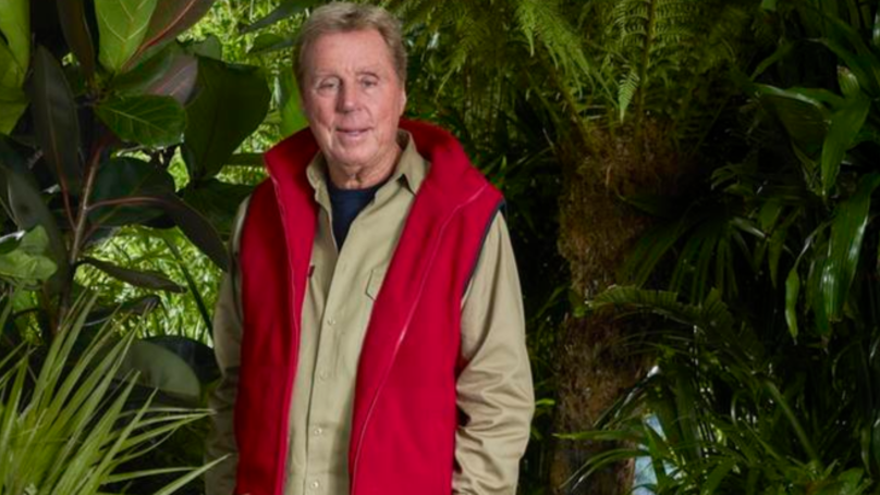 Harry Redknapp Breaks Silence On Louise And Jamie's Marriage