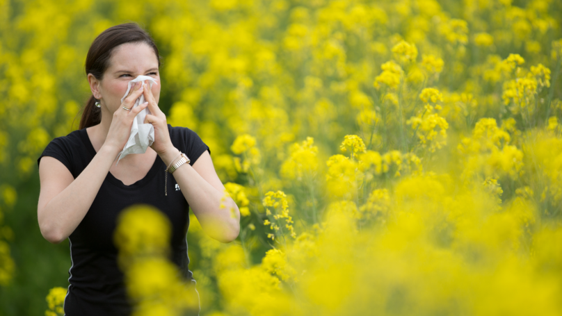 Hay Fever Warning As High Pollen Count Forecast For Large Areas Of UK
