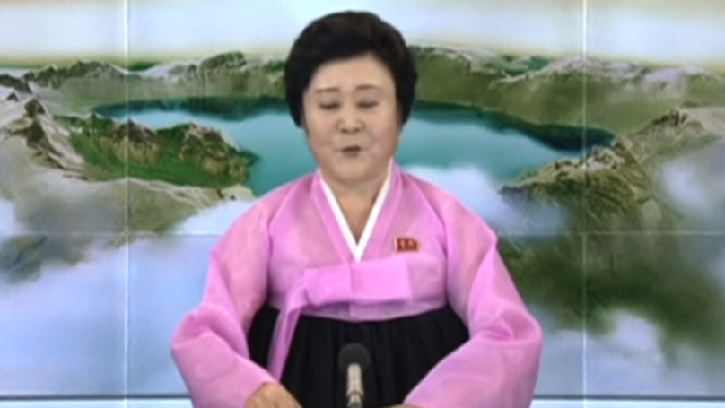 This North Korean Woman In Pink Never Delivers Good News For The West