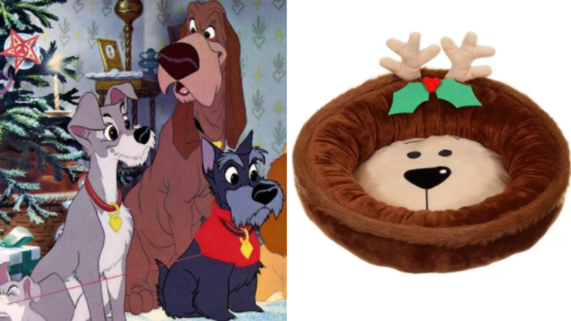 Everyone's Going Barking Mad Over B&M's Christmas Dog Beds