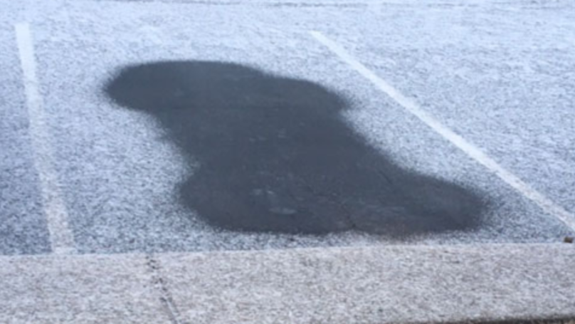 Woman Fined After Her Car Left A Penis Imprint In The Snow