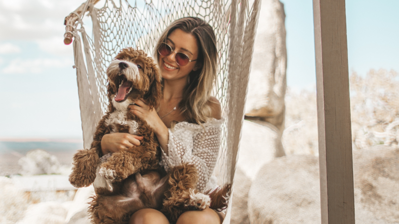 Fifteen Per Cent Of Brits Confess To Loving Their Pet More Than Their Partner