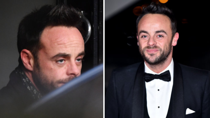 Ant McPartlin Could Lose His Dog To Estranged Wife Lisa Armstrong