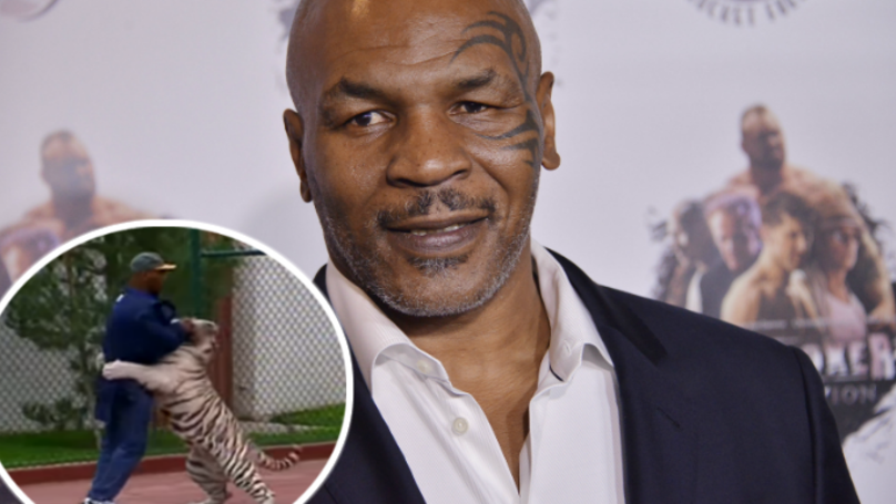 ​Mike Tyson Tells Joe Rogan Why He Got His Pet Tigers