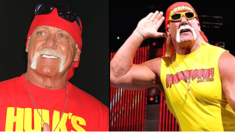 WWE Has Reinstated Hulk Hogan Into The Hall Of Fame