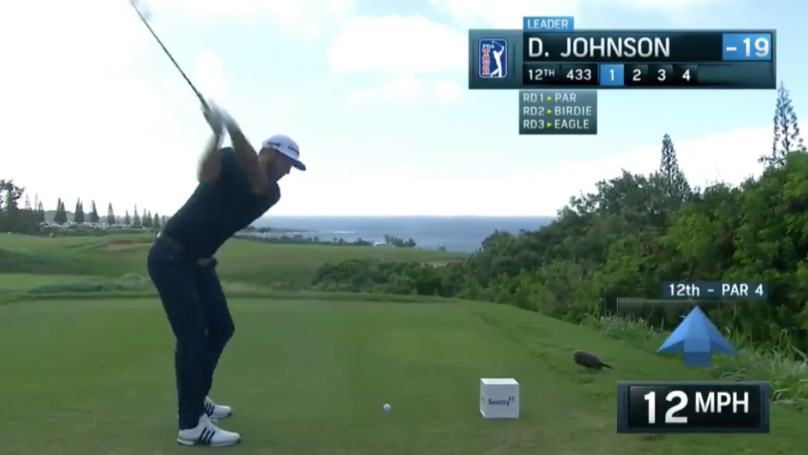 Dustin 'Happy Gilmore' Johnson Inches From Hole-In-One On A 433 Yard, Par 4