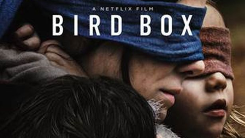 'Bird Box' Breaks Netflix Records With Over 45 Million Views