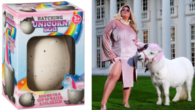 Thanks To B&M You Can Now Hatch Your Own Pet Unicorn For £1.99
