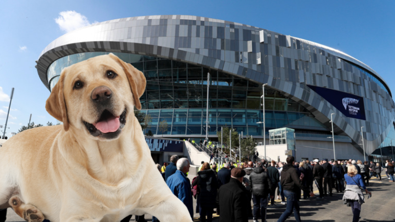 Tottenham Hotspur Install Toilets For Dogs At New Stadium