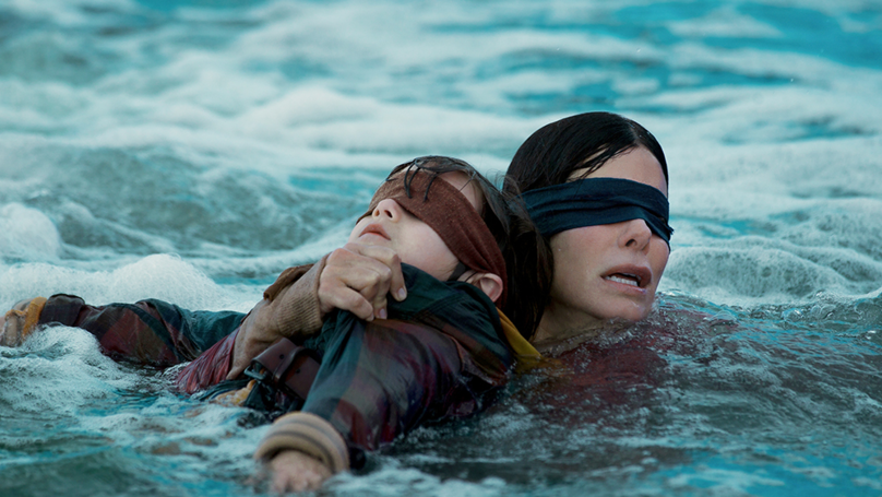 Young Netflixers Are Branding Sandra Bullock 'That Lady From Bird Box' And Fans Roast Them