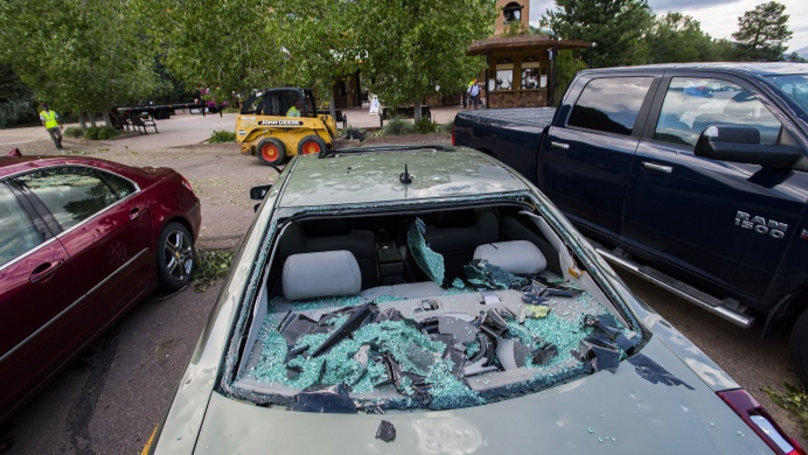 Severe Hailstorm Batters Through Zoo Roof, Killing Five Animals