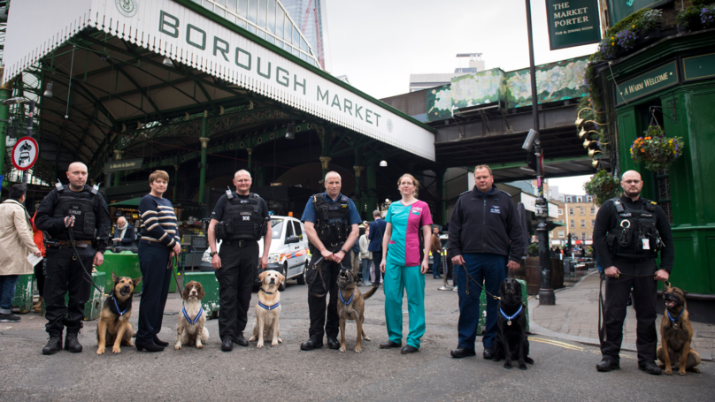 Police Dogs To Be Honoured For London Terror Attack Heroics