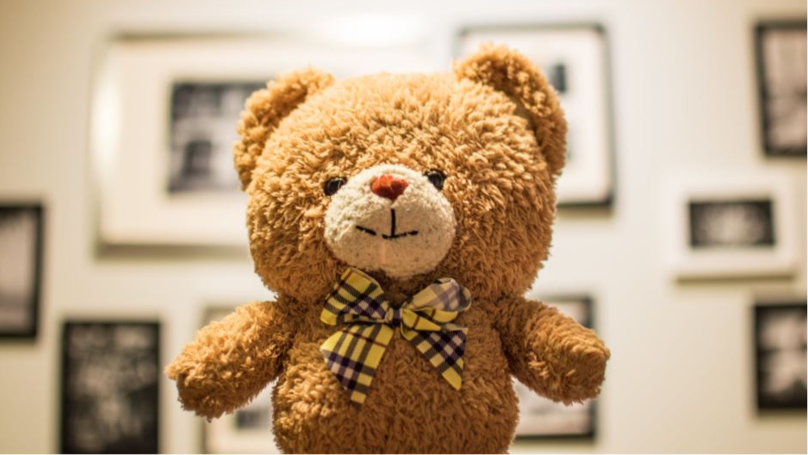 Woman Reveals Her Boyfriend Shares Custody Of A Teddy Bear With His Ex