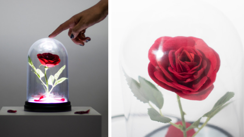 This Beauty And The Beast Enchanted Rose Light Is So Dreamy