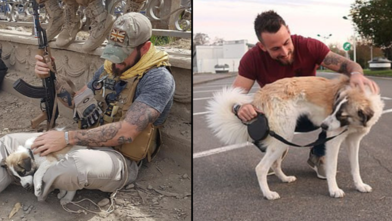 Former Soldier Emotionally Reunites With Puppy He Saved From Rubble In Syria