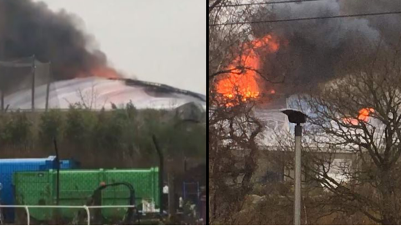 Chester Zoo 'Devastated' After Confirming Some Animals Died In Yesterday's Blaze