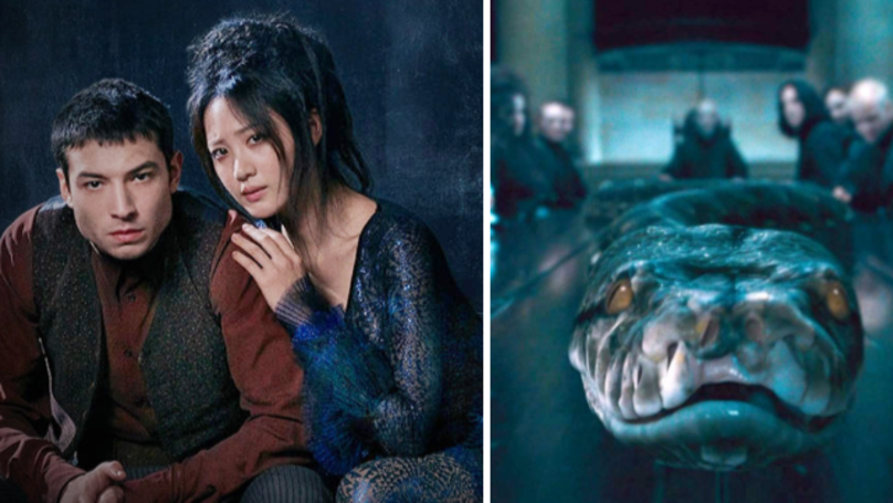 Fans Convinced The Fantastic Beasts 2 Trailer Confirmed A Nagini Theory
