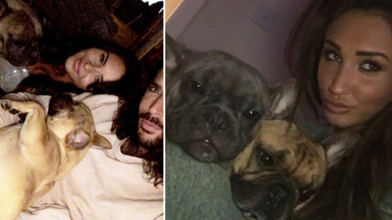 Pete Wicks Moves On From Megan McKenna As He Posts Photo With New Girlfriend