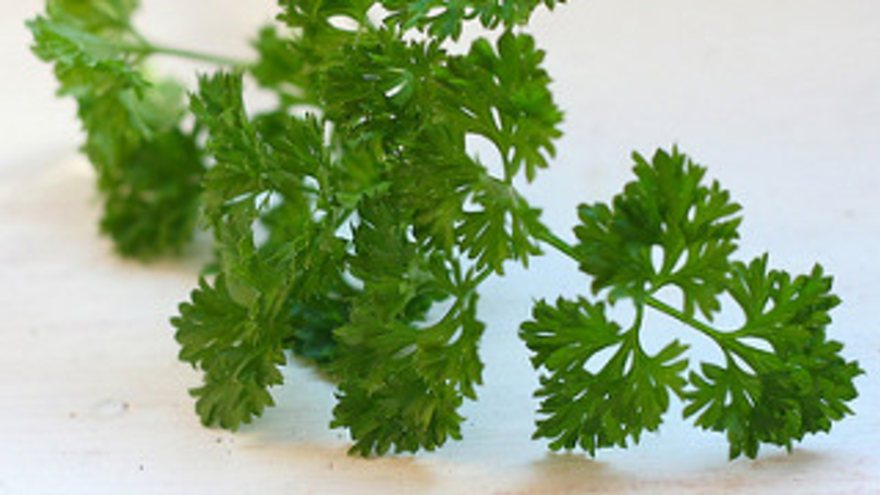 Don't Put Parsley In Your Vaginas, Warn Doctors