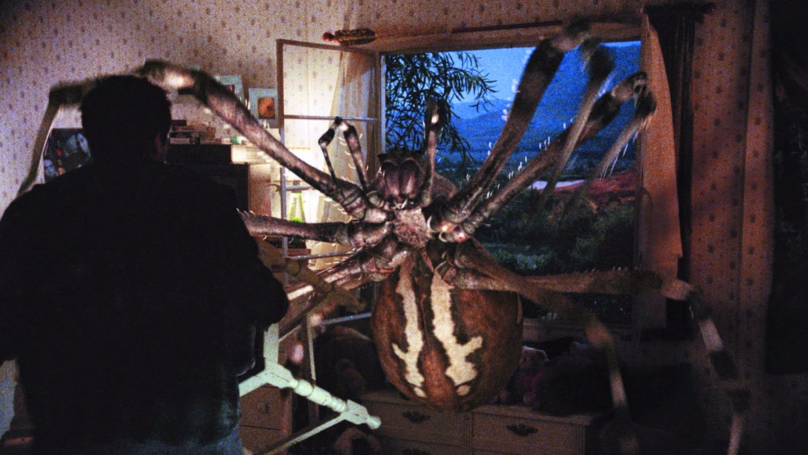 Giant Spiders Are Sneaking Into Your House And Setting Off Your Burglar Alarm