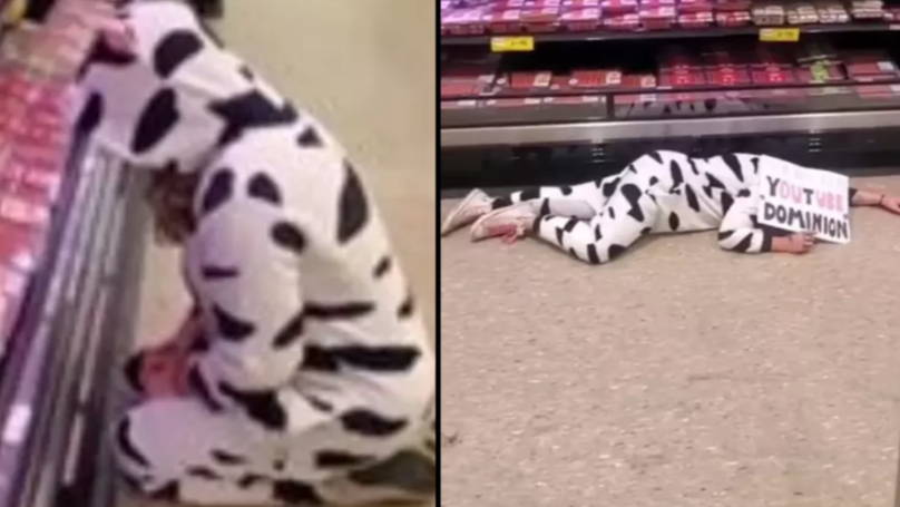 Vegan Protester Dresses Up As A Cow And Mourns Meat Section In Supermarket