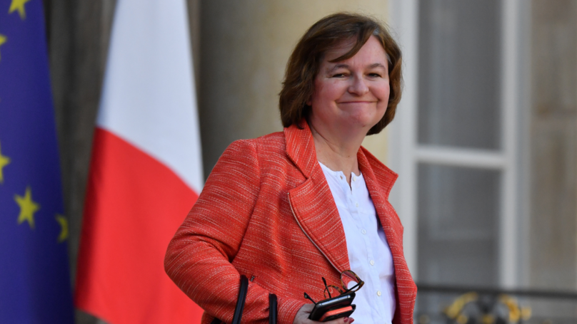 ​France's European Affairs Minister Names Cat 'Brexit' Because Of Its Indecisiveness