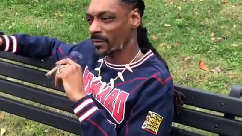 ​Snoop Dogg Trolls President Trump By Smoking Joint Outside White House